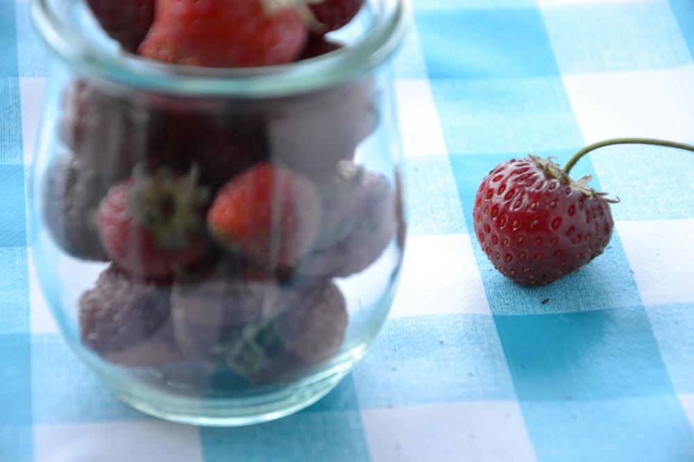 strawberries in jar4
