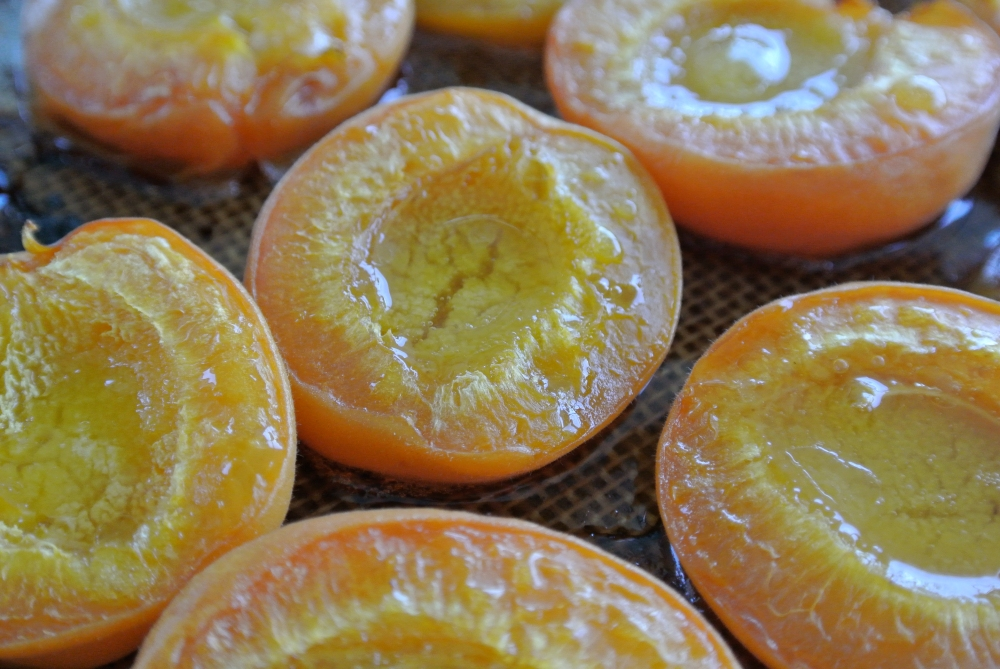 Molten Apricots by Fresh Sheet Nutrition